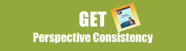 Get Perspective Consistency Grammar Worksheets