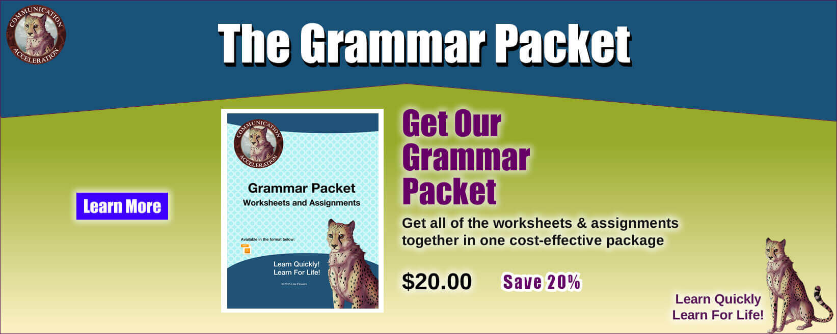 The Grammar Packet - Get all of the worksheets and assignments together in one cost-effective package