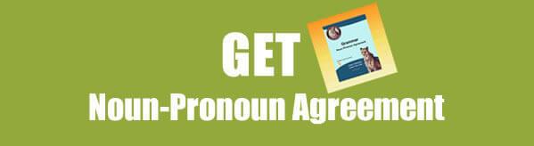 Get Noun-Pronoun Agreement Worksheet in PDF