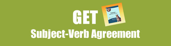 Get Subject Verb Agreement Worksheets in PDF
